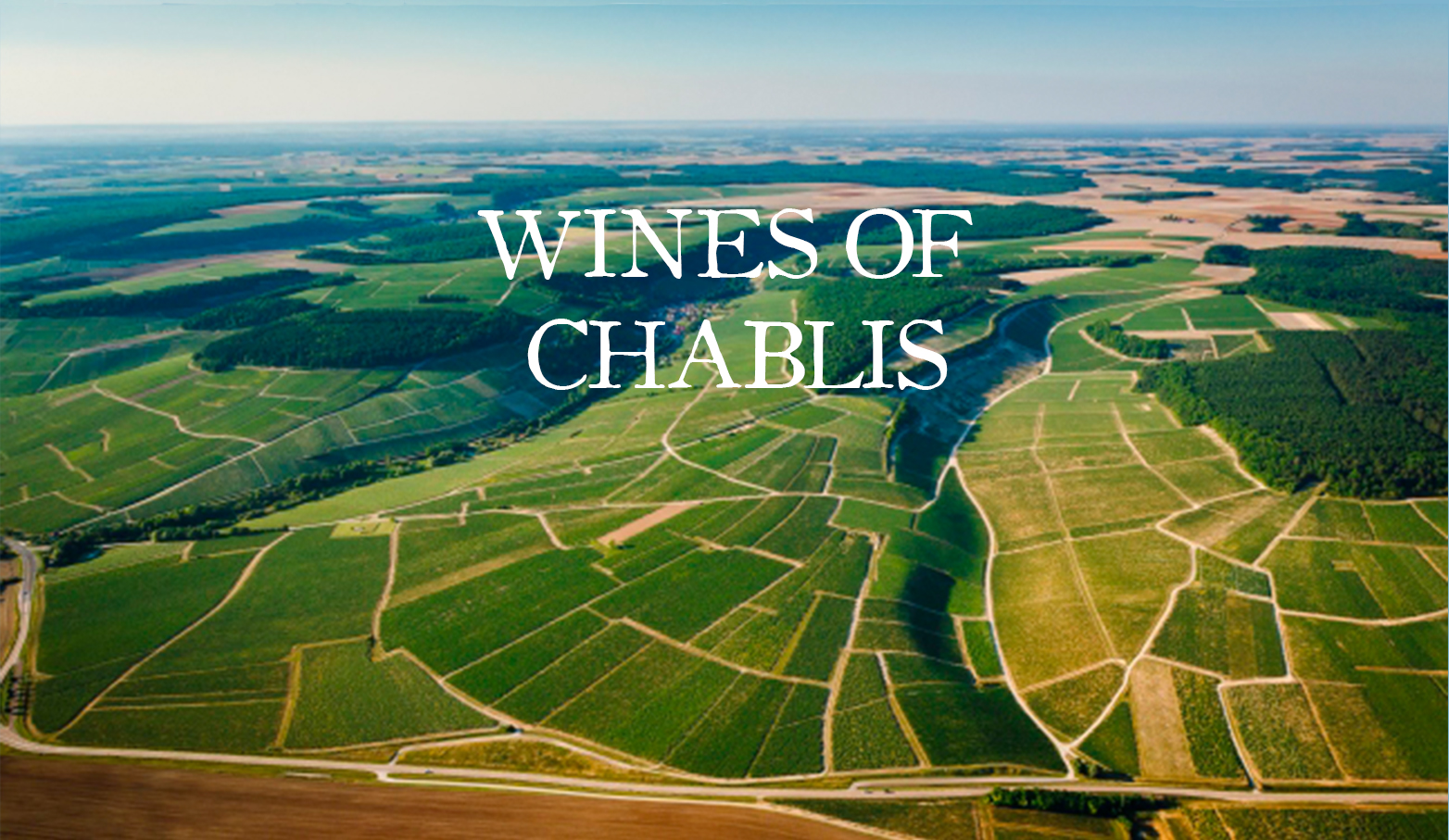 Chablis-Wine-Region-Overhead-View
